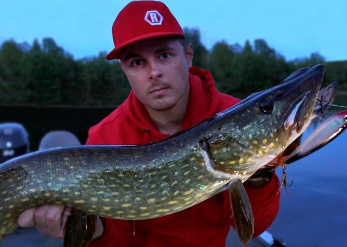 Roligt fiske med flera fina gäddor
