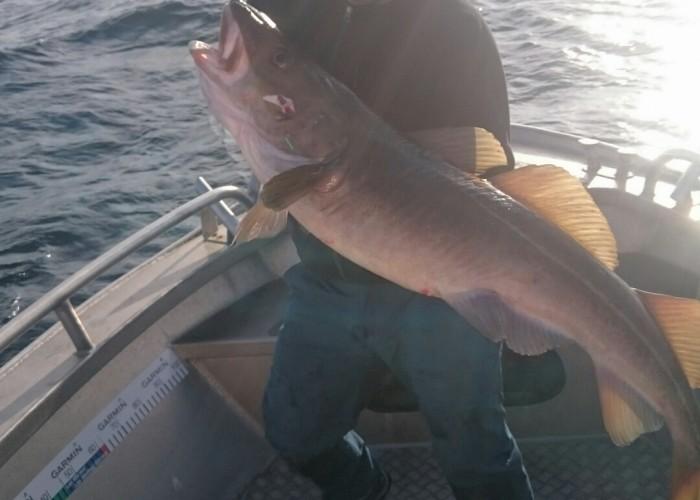 Härligt fiske