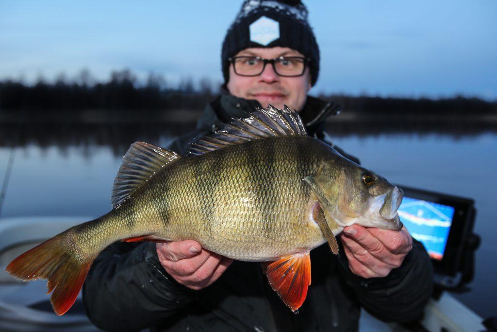 Stefan Källström abborre 1.71 kg